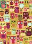Fascinating Owls (RB10528-1), a 100 piece Ravensburger jigsaw puzzle.