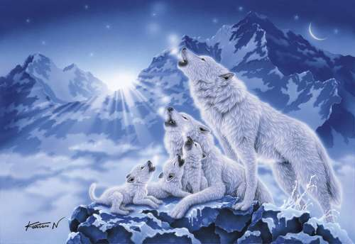 Family of Wolves (CLE 39280), a 1000 piece jigsaw puzzle by Clementoni. Click to view larger image.