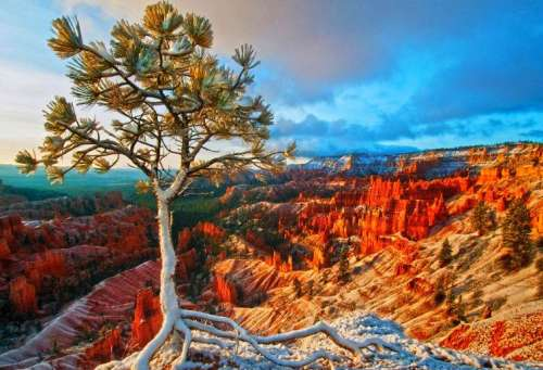 Bryce Canyon Winter Sunrise (EUR60692), a 1000 piece jigsaw puzzle by Eurographics. Click to view larger image.