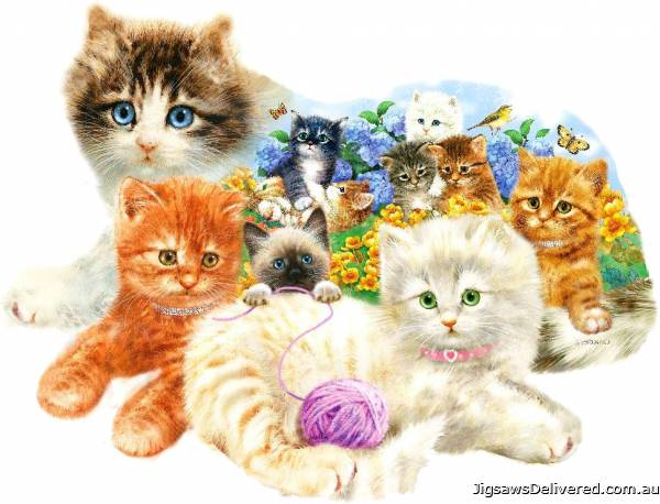 A Litter of Kittens (Shaped Puzzle) (SUN95958), a 1000 piece jigsaw puzzle by Sunsout.