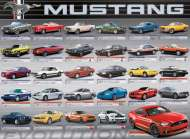 Ford Mustang Evolution (EUR60684), a 1000 piece Eurographics jigsaw puzzle.