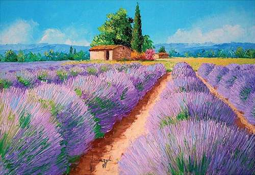 Lavender Scent, France (HOL094547), a 500 piece jigsaw puzzle by Holdson. Click to view larger image.