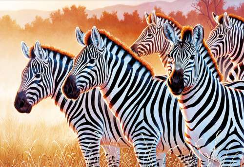 Zebras (TRE26129), a 1500 piece jigsaw puzzle by Trefl. Click to view larger image.