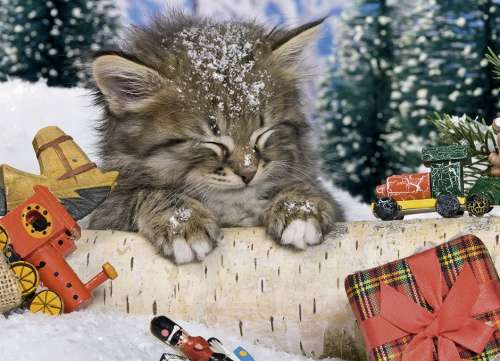 Kitten in the Snow (Tin Box) (RB07547-8), a 80 piece jigsaw puzzle by Ravensburger. Click to view larger image.
