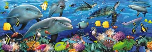 Undersea (Panoramic) (ANA1009), a 1000 piece jigsaw puzzle by Anatolian. Click to view larger image.