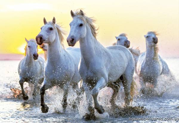 White Horses at Sunset (EDU17105), a 1000 piece jigsaw puzzle by Educa.
