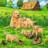 Cats And Dogs (3 x 49pc) (RB08002-1), a 49 piece Ravensburger jigsaw puzzle.