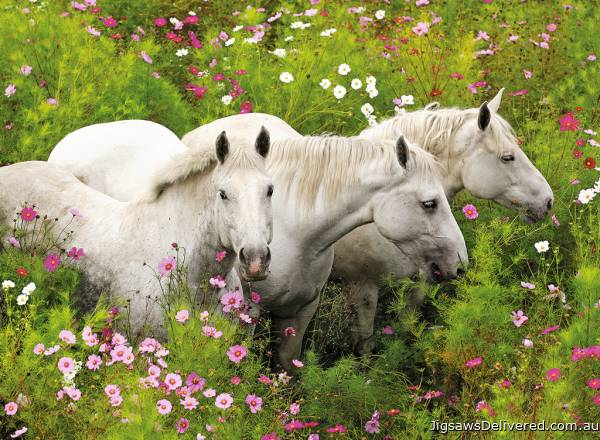 Horses in a Field (RB13218-8), a 300 piece jigsaw puzzle by Ravensburger.