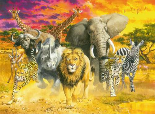 African Animals (RB14724-3), a 500 piece jigsaw puzzle by Ravensburger. Click to view larger image.