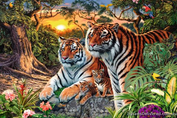 Hidden Tigers (RB17072-2), a 3000 piece jigsaw puzzle by Ravensburger.