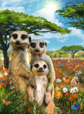 Happy Meerkats (RB14744-1), a 500 piece jigsaw puzzle by Ravensburger. Click to view larger image.