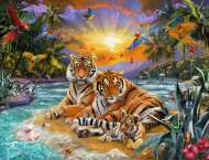 Tigers At Sunset (RB16624-4), a 2000 piece Ravensburger jigsaw puzzle.
