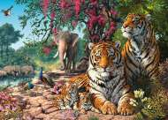 Tiger Sanctuary (HOL098996), a 300 piece Holdson jigsaw puzzle.