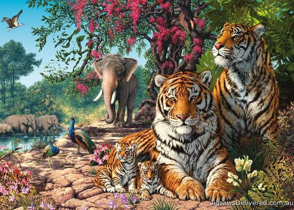 Tiger Sanctuary (HOL098996), a 300 piece jigsaw puzzle by Holdson.