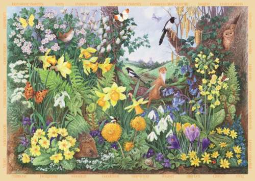 Spring Hedgerow (Large Pieces) (JUM11137), a 200 piece jigsaw puzzle by Jumbo. Click to view larger image.