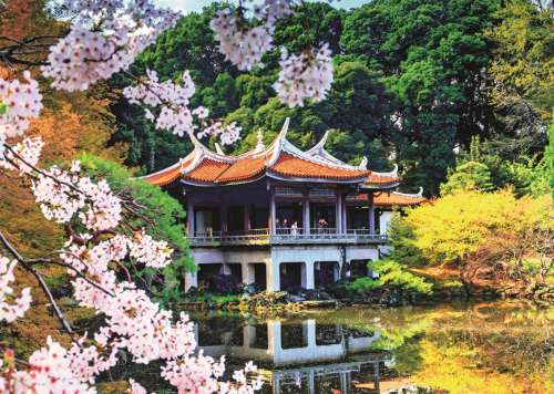 Blossom in Japan (JUM18361), a 1000 piece jigsaw puzzle by Jumbo. Click to view larger image.