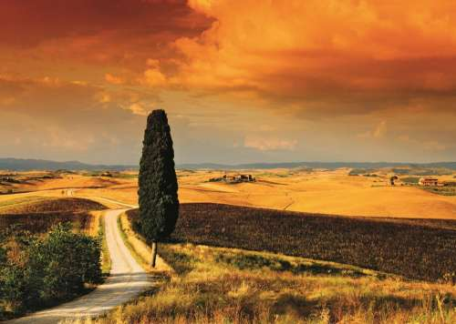 Tuscan Sunset, Italy (JUM18362), a 1000 piece jigsaw puzzle by Jumbo. Click to view larger image.