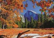 Yosemite National Park, USA (JUM18554), a 1000 piece jigsaw puzzle by Jumbo. Click to view this jigsaw puzzle.