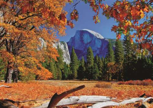 Yosemite National Park, USA (JUM18554), a 500 piece jigsaw puzzle by Jumbo. Click to view larger image.