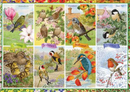Seasonal Garden Birds (JUM11157), a 1000 piece jigsaw puzzle by Jumbo. Click to view larger image.