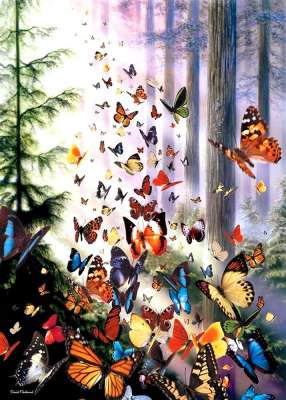 Butterfly Woods (ANA3069), a 1000 piece jigsaw puzzle by Anatolian. Click to view larger image.