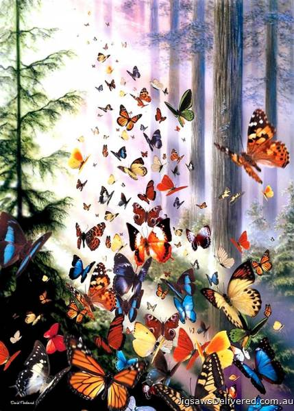 Butterfly Woods (ANA3069), a 1000 piece jigsaw puzzle by Anatolian.