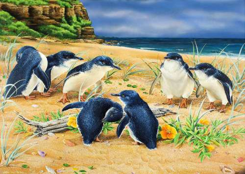 Penguin Parade (Wild Wings) (HOL098606), a 1000 piece jigsaw puzzle by Holdson. Click to view larger image.