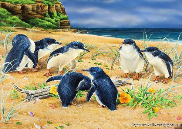 Penguin Parade (Wild Wings) (HOL098606), a 1000 piece jigsaw puzzle by Holdson.