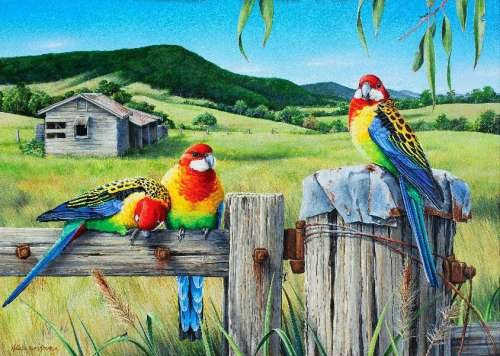 Country Life (Wild Wings) (HOL098583), a 1000 piece jigsaw puzzle by Holdson. Click to view larger image.