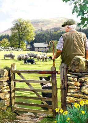 Bringing in The Flock (Country Life) (HOL099009), a 1000 piece jigsaw puzzle by Holdson. Click to view larger image.