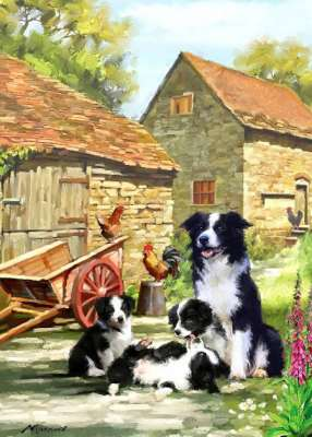 Farmhouse Collies (Country Life) (HOL099016), a 1000 piece jigsaw puzzle by Holdson. Click to view larger image.