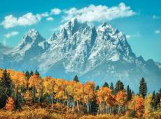 Grand Teton in Fall. Click to view this product
