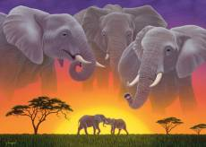 Elephants (Wild at H.... Click to view this product