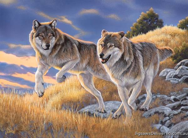 The Wolves (CLE 35033), a 500 piece jigsaw puzzle by Clementoni.