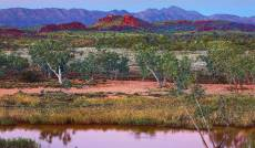 Outback Splendour, F.... Click to view this product