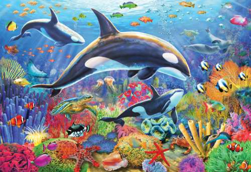 Orca Fun (HOL770106), a 300 piece jigsaw puzzle by Holdson. Click to view larger image.