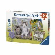 Kittens (Triple pack) (RB08046-5), a 49 piece Ravensburger jigsaw puzzle.