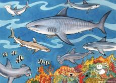 Sea of Sharks (RB09628-2), a 60 piece Ravensburger jigsaw puzzle.