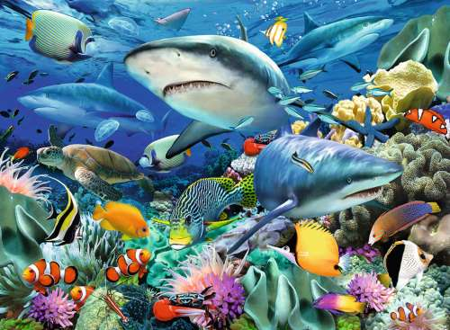 Reef of the Sharks (RB10951-7), a 100 piece jigsaw puzzle by Ravensburger. Click to view larger image.