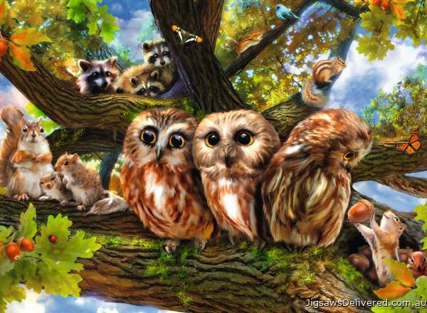 Woodland Neighbours (RB12746-7), a 200 piece jigsaw puzzle by Ravensburger.