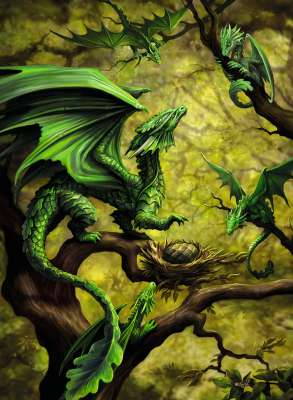 Forest Dragon (RB14789-2), a 500 piece jigsaw puzzle by Ravensburger. Click to view larger image.