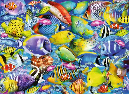 Tropical Traffic (RB14796-0), a 500 piece jigsaw puzzle by Ravensburger. Click to view larger image.