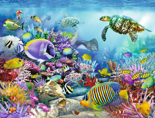 Coral Reef Majesty (RB16704-3), a 2000 piece jigsaw puzzle by Ravensburger. Click to view larger image.