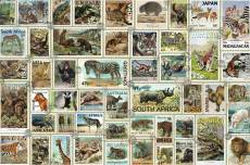 Animal Stamps. Click to view this product