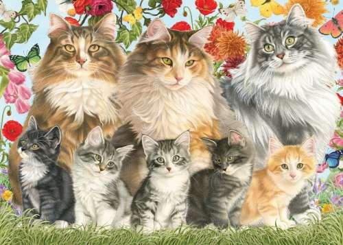 Francien's Cat Family (JUM18325), a 500 piece jigsaw puzzle by Jumbo. Click to view larger image.