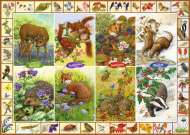 Seasonal British Wildlife (JUM11200), a 1000 piece jigsaw puzzle by Jumbo and artist Sarah Adams. Click to view this jigsaw puzzle.
