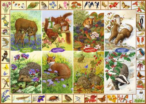 Seasonal British Wildlife (JUM11200), a 1000 piece jigsaw puzzle by Jumbo. Click to view larger image.
