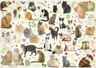 Cat Breeds (JUM18595), a 1000 piece jigsaw puzzle by Jumbo. Click to view this jigsaw puzzle.