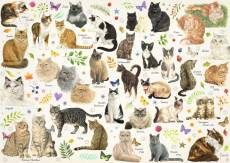 Cat Breeds (JUM18595), a 1000 piece Jumbo jigsaw puzzle.