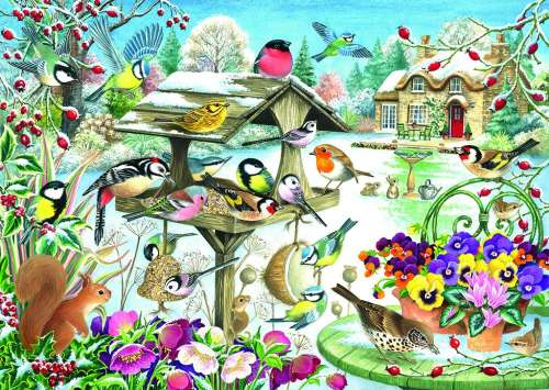 Winter Garden Birds (JUM11183), a 500 piece jigsaw puzzle by Jumbo. Click to view larger image.